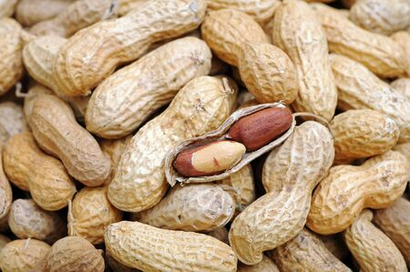 a lot of peanut for background
