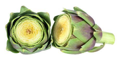 section of artichoke isolated on white background Reklamní fotografie