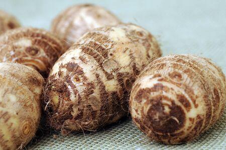 a group of taro on burlap