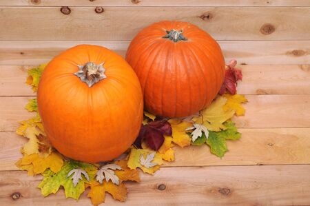 a pair of pumpkins and autumn leaves  for Halloween decoration Stock Photo