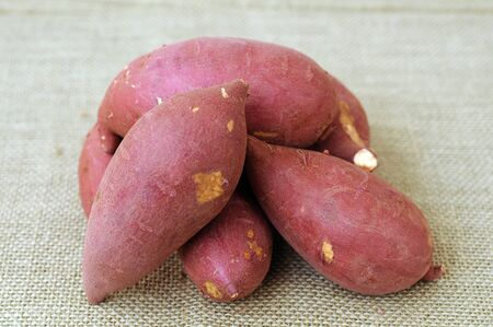 many sweet potatoes on burlap