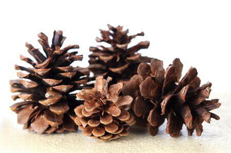 many pine cones on table Standard-Bild