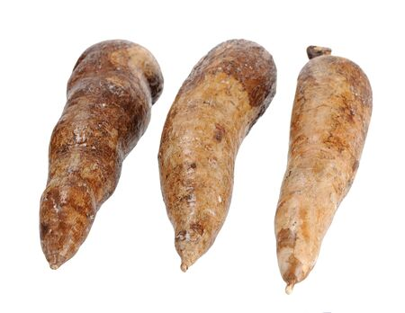 three whole manioc (cassava) isolated on white background