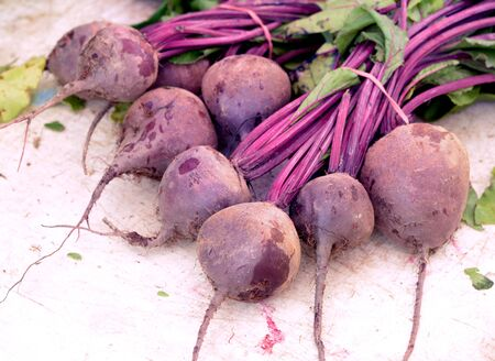 fresh bunch of beet on the table
