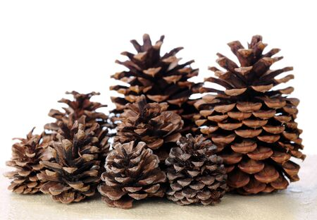 many pine cones on table