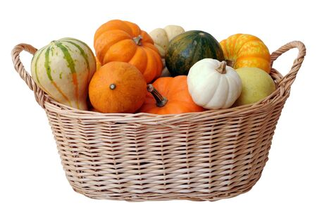 mini pumpkins and gourd in bucket isolated on white background