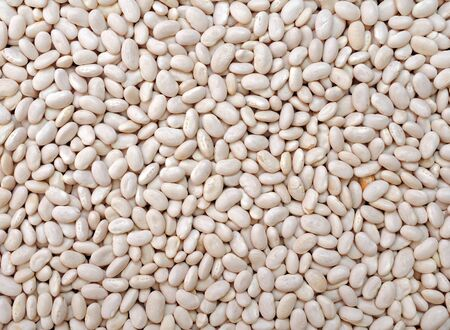 a pile of navy beans for background uses