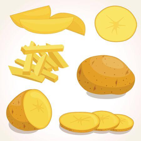 Potatoes vector illustration isolated on background. Set of whole, slices, half, lobule, circle potatoes. Stock Illustratie