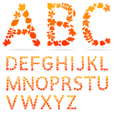 font made from leaves. Autumn alphabet.
