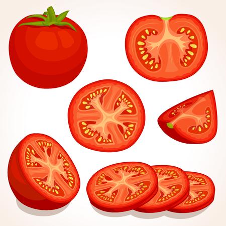 배경에 고립 된 다른 토마토의 집합입니다.