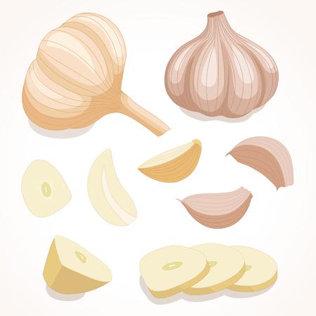 Fresh whole garlic.