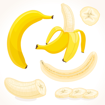 artoon: Vector banana in various forms. Whole, sliced, half of banana isolated on white background. Illustration in cartoon style. Illustration