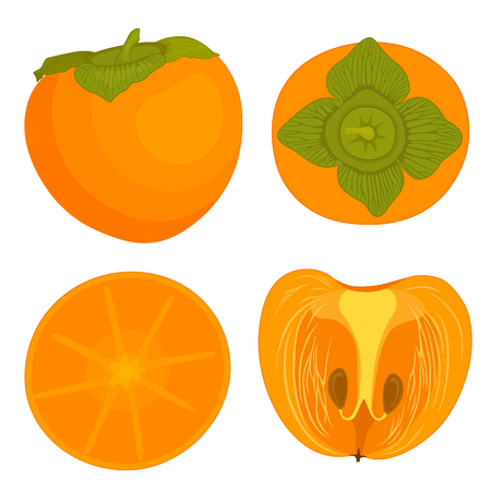 Set of vector persimmon in the cartoon style. Top view. Half a whole fruit persimmon close-up.