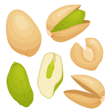 Pistachio vector. A set of whole kernels, shells, cracked cores.