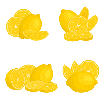 Set of compositions with lemon. Vector illustration. Citrus from different angles.