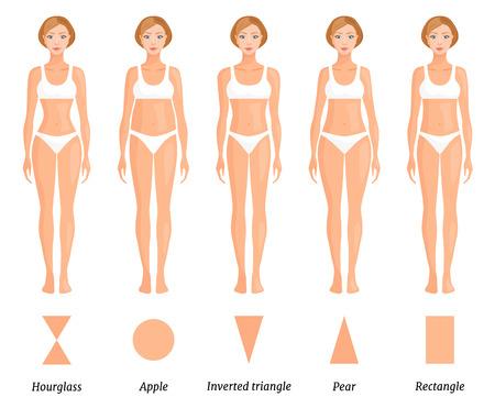 Vormen van vrouwelijk lichaamstype. Verschillende figuren van vrouwen. Vector.