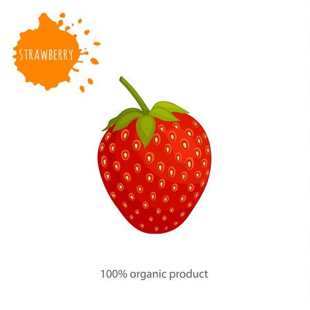 Vector card with strawberries. Berry close up isolated on white background with an inscription.