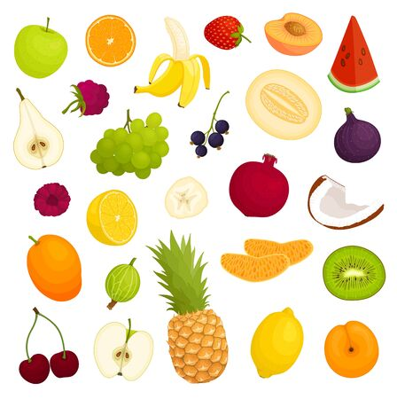 Assorted variety of fresh fruits. Vector illustration.