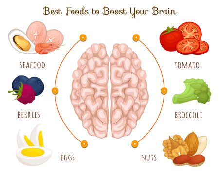 Food is good for the brain. Vector illustration. Informative banner on the theme of food, diets and health. Stock Illustratie