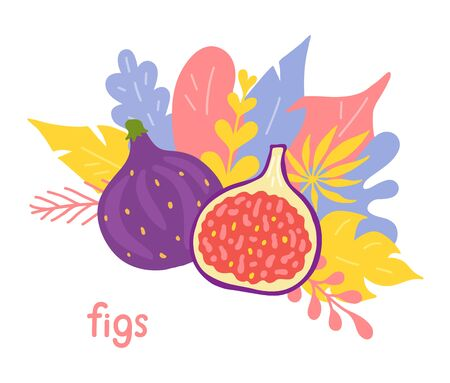 Figs drawn in doodle style. Vector hand-drawn illustration with a composition of fruits and foliage. Фото со стока - 136987284