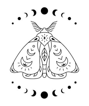 Boho outline butterfly. Vector mystical moth. Celestial insect.