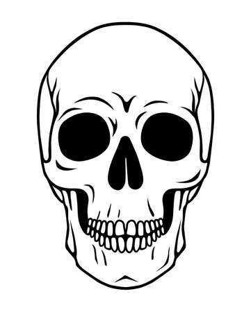 Drawn human skull. Death symbol. Vector illustration. Dead Head.