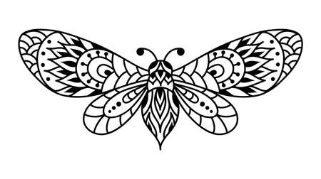 Black and white butterfly silhouette. Moth mandala. Ilustrace
