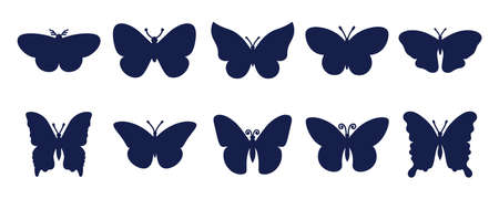 Butterfly silhouette set. Vector monochrome illustration isolated on white background. Ilustrace
