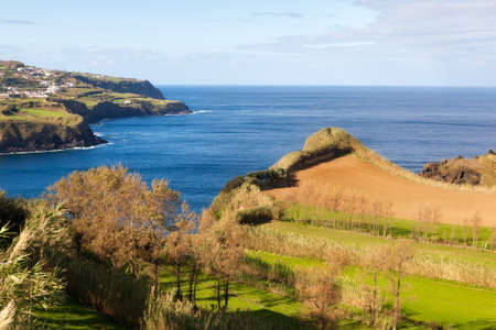 cultivated land: Cultivated land with grass at the Atlantic ocean coast, San Miguel, Azores, Portugal