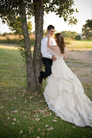 just married couple standing and kissing against a tree in the shade on a sunny day photo