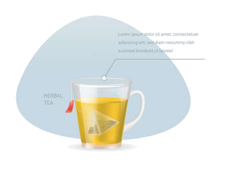 Realistic glass transparent cup with hot fresh black tea in pyramidal tea bag infographic on a light background vector illustration