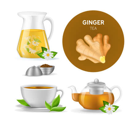 Realistic ceramic cup with hot fresh black tea on saucer with mint leaves, ginger tea, teapots with ginger root, ground roots in tea leaves vector illustration