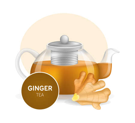 Realistic glass custard transparent teapot with hot fresh ginger tea and ginger root infographic on a light background. Teapot with lid and tea leaves compartment vector illustration
