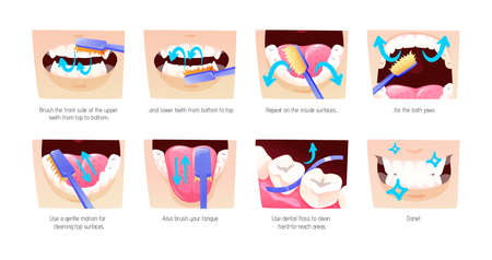 Step-by-step scheme, instructions on how to brush your teeth properly. Infographics toothbrush, toothpaste for oral hygiene. Clean healthy, white teeth, healthy lifestyle, dental care cartoon vector