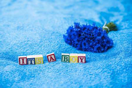 baby towel: Its a boy Pregnancy Announcement made of toy letter blocks on blue bath towel background with cornflowers