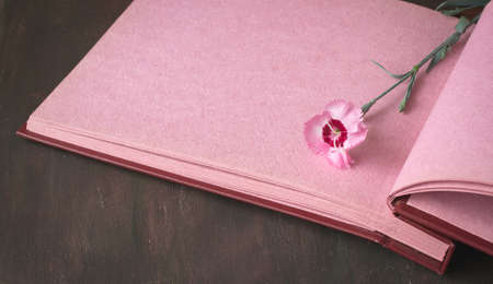 tenderness: Opened vintage photo album with pink pages on wooden table, sweet william flowers, space for romantic text, selective focus