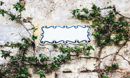 traditional climbing: Traditional Maltese ceramic tile placed on the stone wall entwined with climbing bush plant, city of Mdina, Malta. Place your text Stock Photo