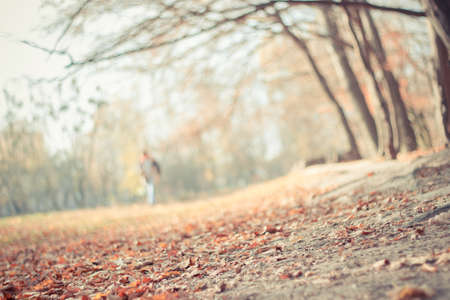 lonelyness: Blurred soft colors fall landscape background with fallen autumn leaves and blurred man walking far away in the park. Seasonal natural scene. Instagram filter effect used