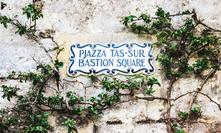 traditional climbing: Traditional Maltese street name sign painted on ceramic tile placed on the stone wall entwined with climbing bush plant, city of Mdina, Malta