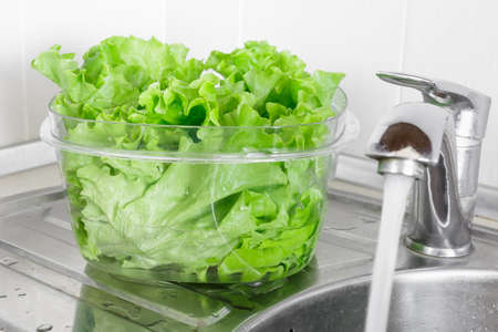 pesticides: Fresh lettuce leaves soaked in transparent plastic bowl to remove pesticides residues, prepare for cooking. Healthy organic vegetable food, diet concept Stock Photo