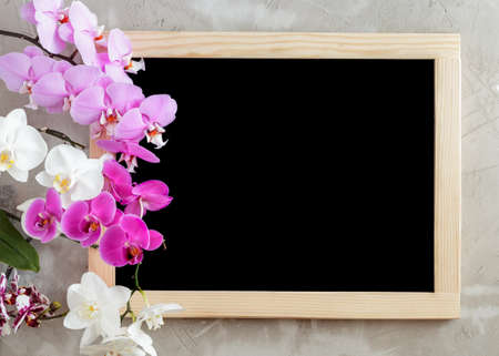 Variety of orchid flowers on the left side and the blank black chalkboard with wooden frame on concrete background