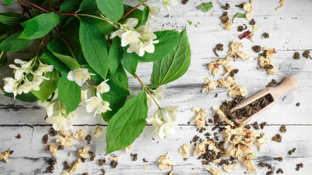 jessamine: Scattered dried green tea leaves with fresh jasmine flowers and wooden spoon on a white wooden table