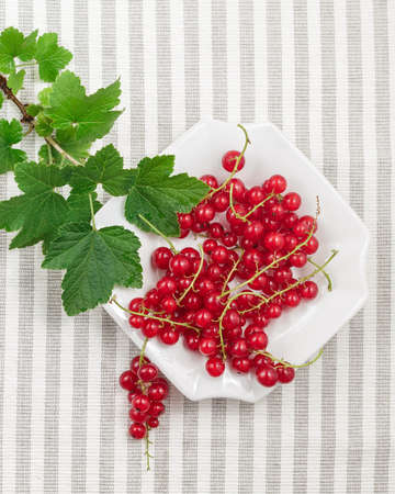 Freshly collected ripe redcurrants with leaves on plate over striped textile background. Top view Stock Photo