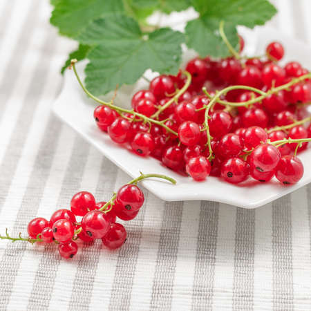 Freshly collected ripe redcurrants with leaves on plate over striped textile background. Selective focus