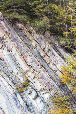 Metamorphic rock layers texture in Carpathian mountains. Geological stratification natural background