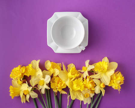 Spring table set with clean elegant porcelain tea or coffee cup and narcissus flowers, vibrant yellow and purple colors, top view, flat lay Standard-Bild