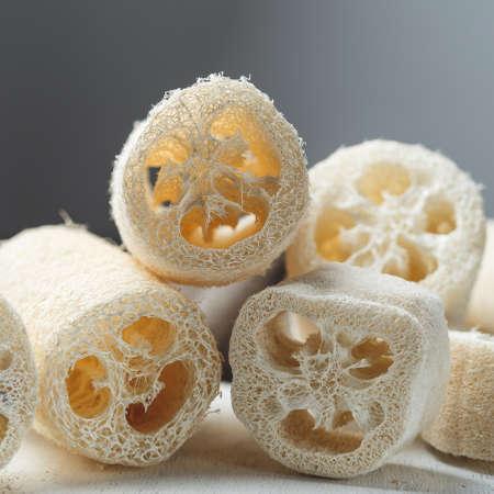 Luffa sponge for zero waste dish washing or bath