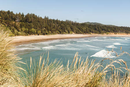 Oregon Coast landscape with sandy beach and dry grass on the foreground, Pacific Ocean Coastline, USA 版權商用圖片