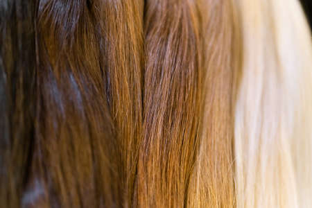 Samples of natural remy human hair extensions