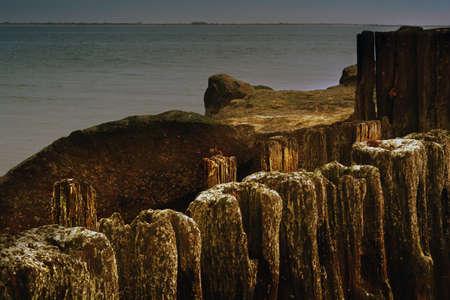 piling: Ocean. Piling.